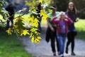 Školákom sa začínajú jesenné prázdniny