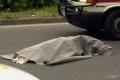 Chodca na diaľnici pri Piešťanoch zrazili dve autá. Nebolo ho vidno
