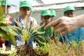 Botanikiáda 2016 bude v znamení 'tajomných' rastlín