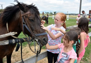 POZDIŠOVCE: Deti spoznávajú na ranči počas tábora kone a iné zvieratá