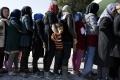 Mobilná aplikácia pomáha mladým migrantom, aby sa nestratili v Európe