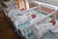 Páru v USA sa narodili zdravé šestorčatá, po 17 rokoch snaženia sa