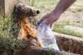 HYGIENICI VARUJÚ: Horská studnička nie je zárukou kvalitnej vody