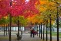 Prvý jesenný deň sa na Slovensku začne v noci na nedeľu 23. septembra